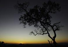 Небо перед заходом солнца Стоковая Фотография RF