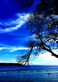 небо пляжа голубое стоковое фото rf