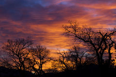 небо пожара Стоковые Фото