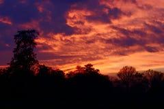 небо пожара Стоковые Изображения