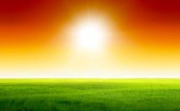 небо поля зеленое стоковое фото rf