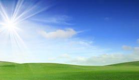 небо поля зеленое Стоковые Фотографии RF