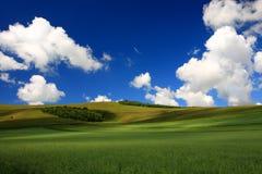 небо поля Стоковая Фотография