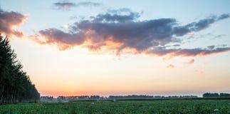 Небо после дождя Стоковые Изображения