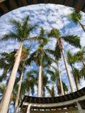 Небо предел стоковые изображения rf