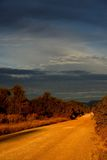 Небо рассвета грязной улицы Стоковое Фото