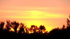 Небо рассвета Стоковая Фотография