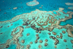 небо рифа барьера большое стоковые фотографии rf
