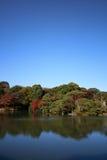 небо сада осени голубое Стоковая Фотография RF