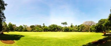 Небо сценарного anb природы голубое, Цейлон стоковое изображение