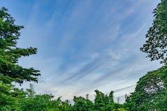 Небо с редко облаком в линии форме стоковая фотография rf