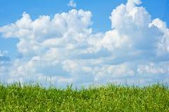 небо травы поля облаков Стоковая Фотография