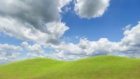небо травы поля совершенное Стоковое Изображение RF