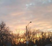 Небо утра стоковые изображения