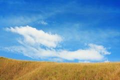 небо холма Стоковые Изображения