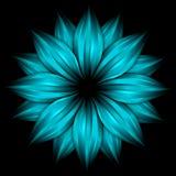 небо цветка абстрактной черноты предпосылки голубое Стоковое Фото