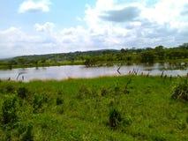 Небольшое озеро в холме Стоковое фото RF