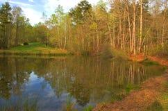 Небольшое озеро в Georgia Стоковые Изображения