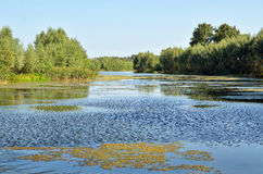 Небольшое озеро в Tignes Стоковые Изображения