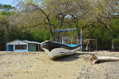 Небольшой дом, шлюпка и деревья на песчаном пляже Стоковая Фотография RF