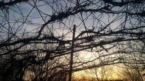 Небо + Стоковое Изображение
