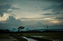 Небо Beautful на сумраке в середине поля Стоковое Изображение