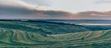 Небо fields II Стоковое Изображение RF