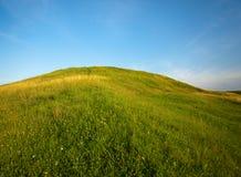 небо filds зеленое Стоковые Фотографии RF