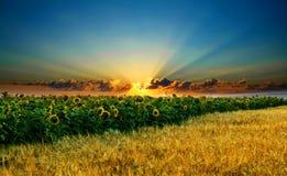 небо magyc Стоковые Изображения RF