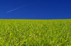 небо n травы Стоковые Фото