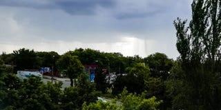 Небо overcast с деревьями и взглядом дороги стоковое изображение rf