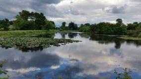 Небо redlected на воде Стоковая Фотография RF