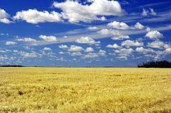небо saskatchewan стоковое изображение rf