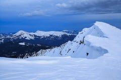 Невероятная сцена зимы с снегом покрыла леса, высокую гору Замороженные снежинки создали интересные формы и тома стоковые изображения rf
