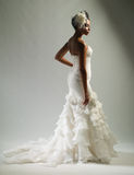 Невеста Афроамериканца Стоковое Изображение RF