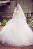 Невеста встречает заход солнца на пристани стоковое изображение