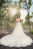 Невеста в парке Стоковые Изображения
