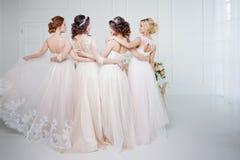 Невеста в салоне свадьбы Красивая девушка 4 в оружиях ` s одина другого Задняя часть, юбки шнурка конца-вверх Стоковое Изображение