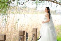 Невеста девушки в платье свадьбы с элегантным стилем причёсок, с белым платьем свадьбы Standingin трава рекой Стоковые Изображения RF