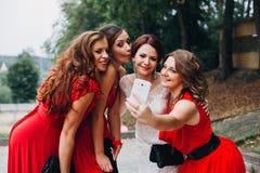 Невеста и девушки bridesmaids красивые в красном цвете Стоковое фото RF
