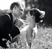 Невеста и Groom в влюбленности Стоковые Фото