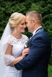 Невеста и groom в парке стоковые изображения rf