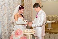 Невеста и groom носят кольца одина другого Стоковые Фотографии RF