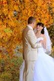 Невеста и groom около вала осени Стоковая Фотография RF