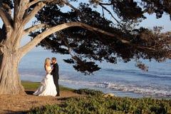 Невеста и groom Стоковое фото RF