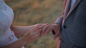 Невеста кладет кольцо на палец groom Свадебная церемония на заходе солнца сток-видео
