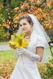 невеста мечтательная стоковые фотографии rf