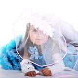 невеста немногая Стоковые Фотографии RF