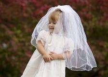 невеста немногая Стоковые Изображения