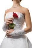 невеста подняла Стоковая Фотография